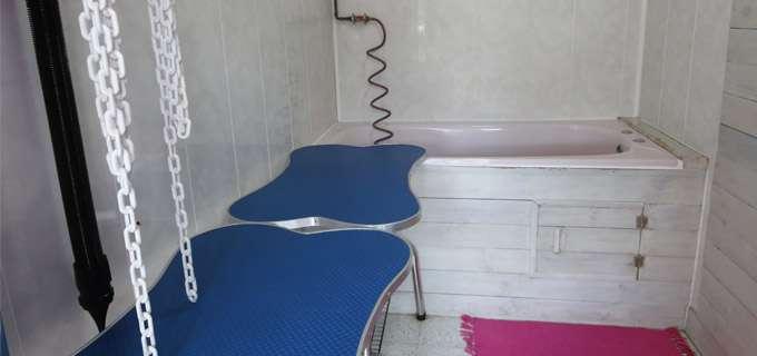 cat and dog magasins et commerces de caudry. Black Bedroom Furniture Sets. Home Design Ideas